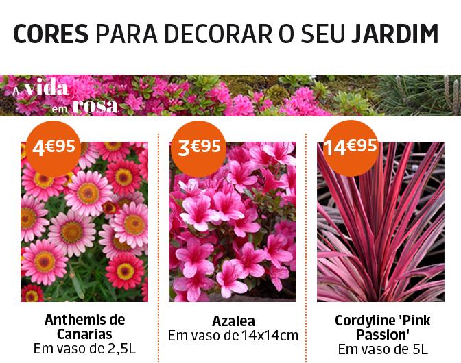 jardimideal_rosa